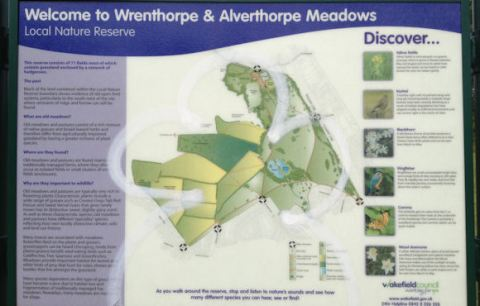 Wrenthorpe Park 010817 (1)