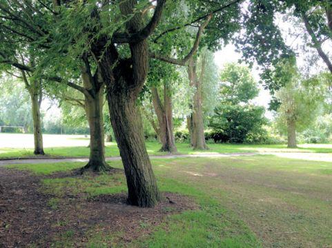 Wrenthorpe Park 010817 (10)