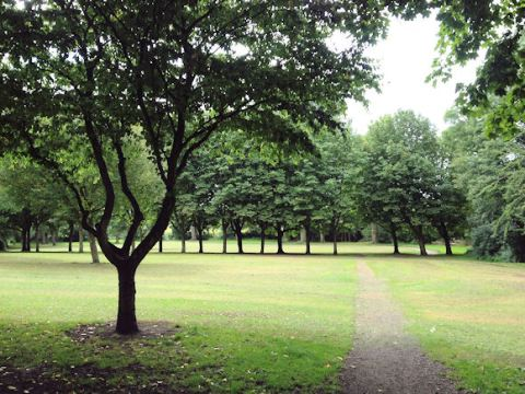 Wrenthorpe Park 010817 (8)